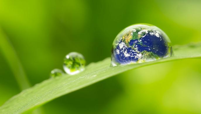 n defensa del medio ambiente