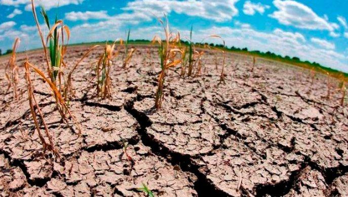 El cambio climático, una amenaza real que requiere solución global