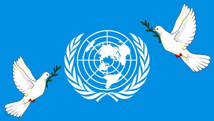 Democracia en el Año Internacional de la Paz